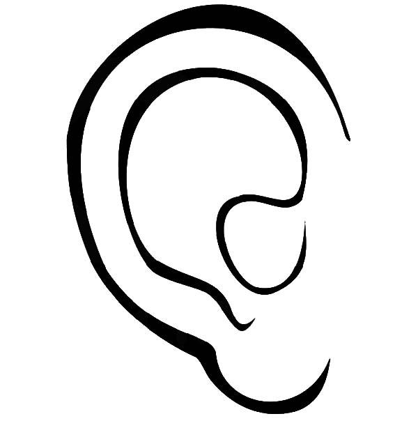 ear coloring a picture of an ear clipart best coloring ear