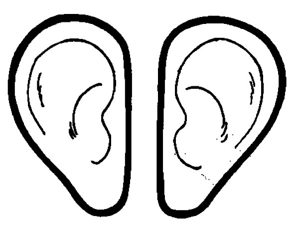 ear coloring drawing ear face coloring book ear png pngwave ear coloring