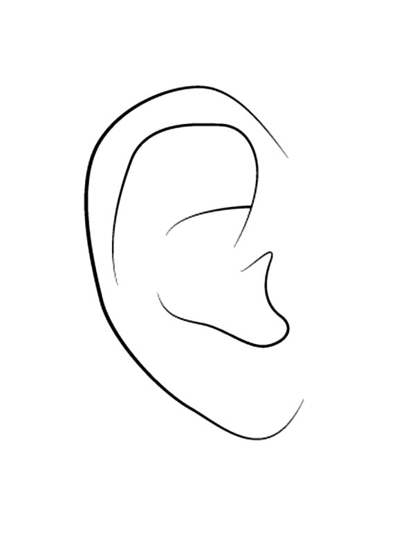 ear coloring ear coloring pages for kids ear coloring pages for kids coloring ear
