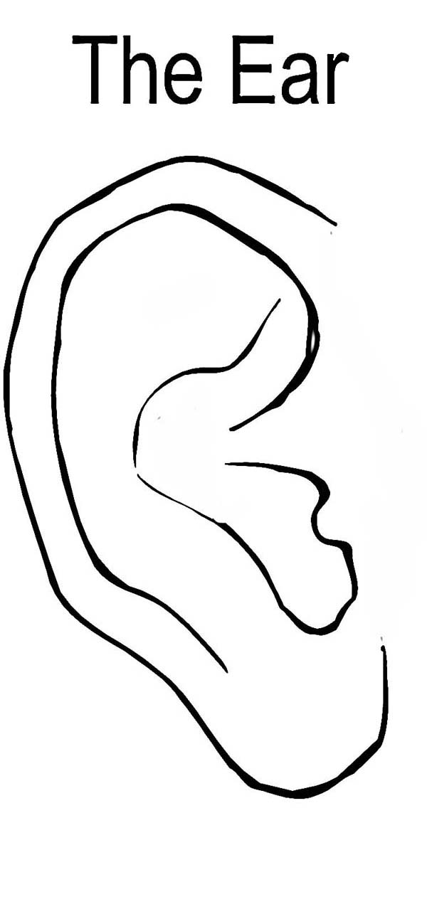 ear coloring human ear coloring pages kids play color coloring ear