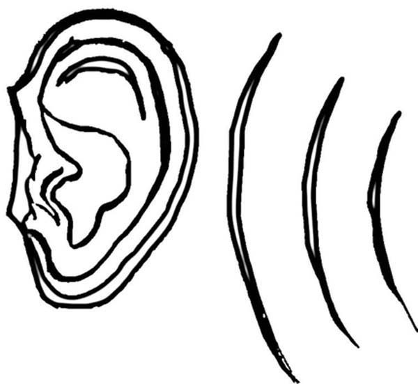 ear coloring pair of ear coloring pages kids play color coloring ear