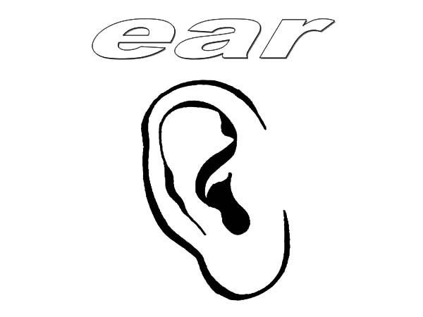 ear coloring pencil sketch ear coloring pages kids play color coloring ear