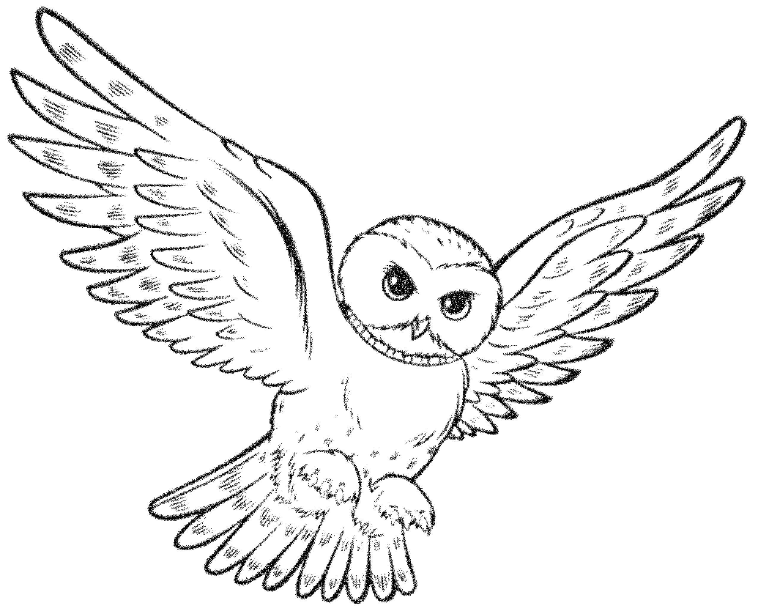 easy cute owl coloring pages cute printable owl coloring pages for kids owl easy cute pages coloring