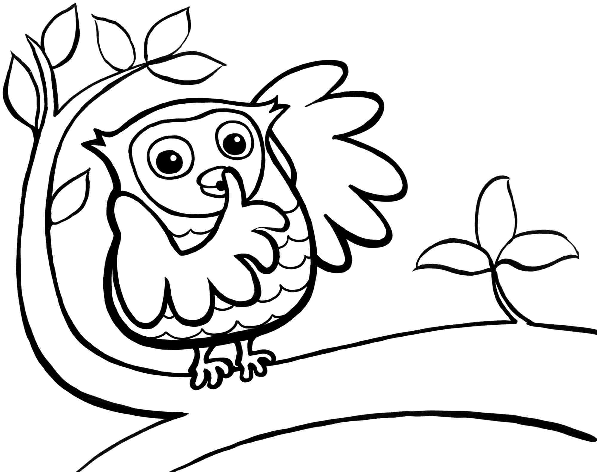 easy cute owl coloring pages easy cute owl coloring pages dejanato cute pages coloring owl easy