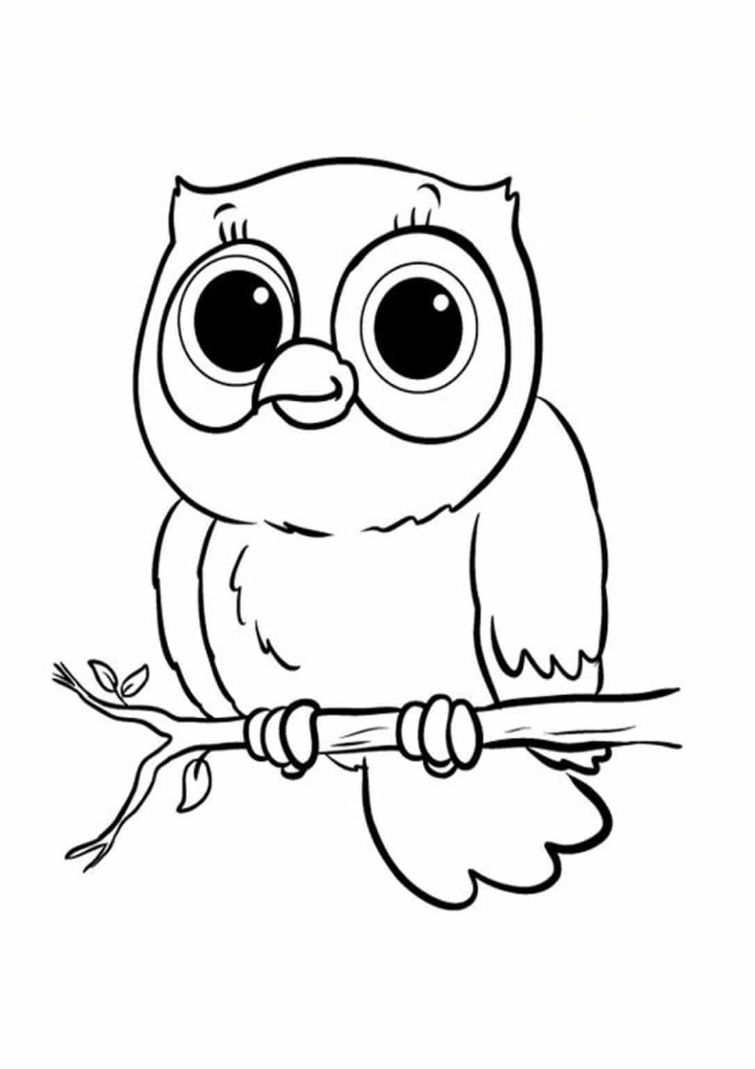 easy cute owl coloring pages free easy to print owl coloring pages owl coloring coloring easy owl pages cute