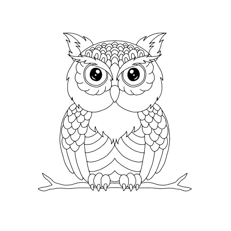 easy cute owl coloring pages nocturnal bird owl coloring pages 34 pictures cartoon clip coloring cute easy pages owl