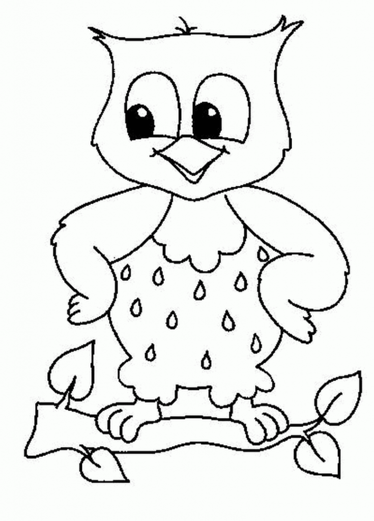 easy cute owl coloring pages owl coloring pages at getcoloringscom free printable owl pages coloring cute easy