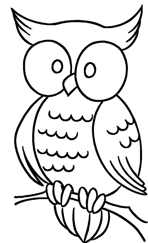 easy cute owl coloring pages owl coloring pages for adults free detailed owl coloring cute coloring easy pages owl