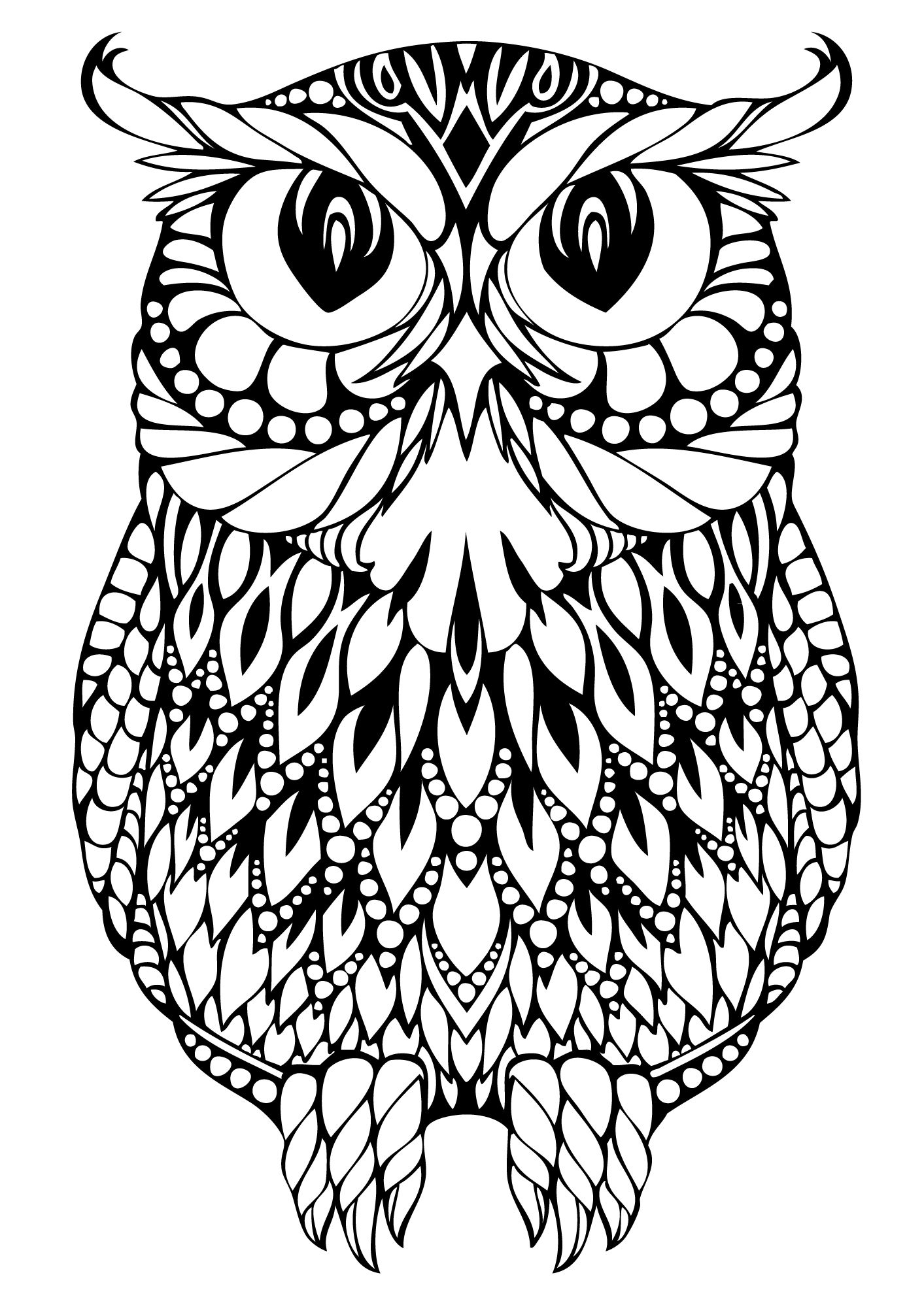 easy cute owl coloring pages owl drawing step by step at getdrawings free download cute pages owl easy coloring