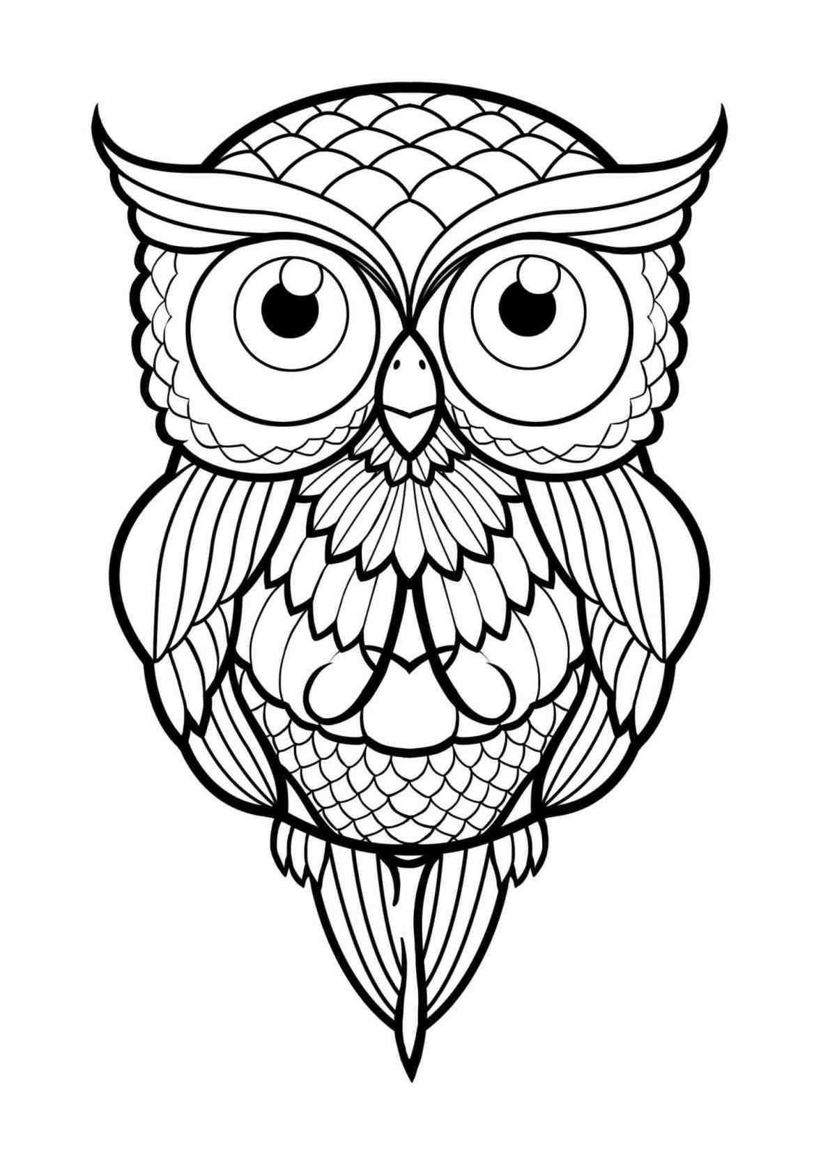 easy cute owl coloring pages owl easy drawing at getdrawings free download pages cute coloring easy owl