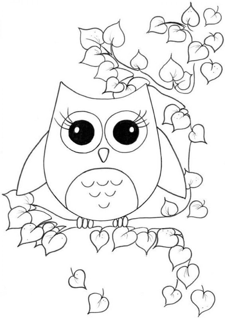 easy cute owl coloring pages simple owl drawing at getdrawings free download cute owl coloring easy pages