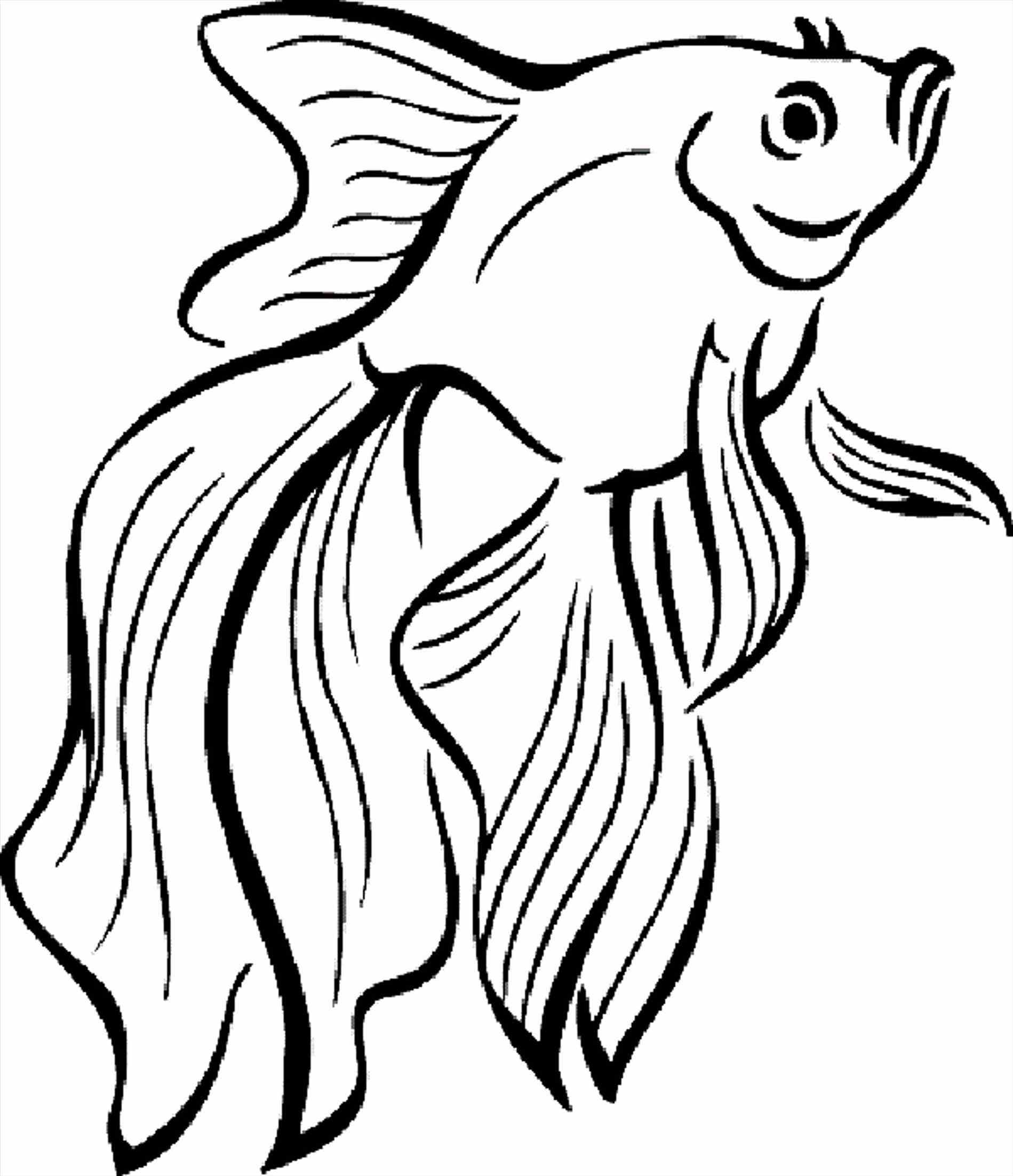easy fish coloring pages simple clown fish coloring pages coloring pages for kids fish coloring easy pages
