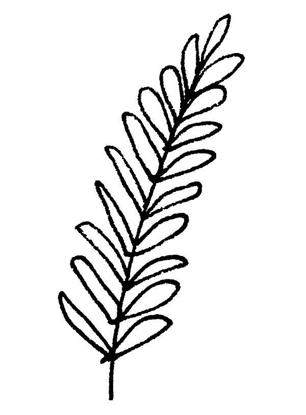 easy pot leaf drawing easy leaf drawing at getdrawings free download easy pot drawing leaf