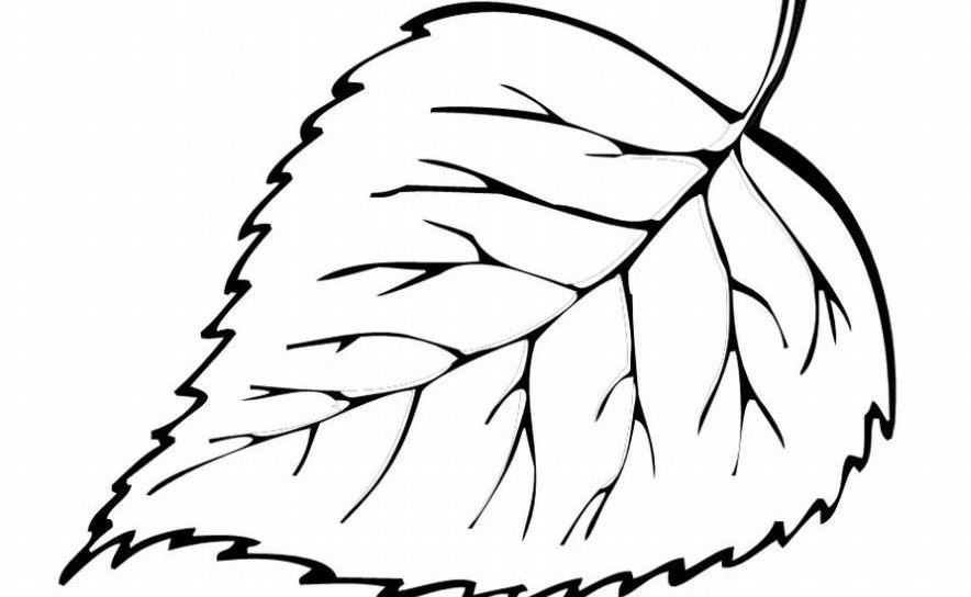 easy pot leaf drawing easy pot leaf drawing free download on clipartmag easy pot drawing leaf