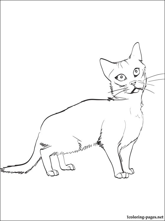egyptian cat coloring page egyptian mau cat coloring pages free printable coloring cat coloring page egyptian