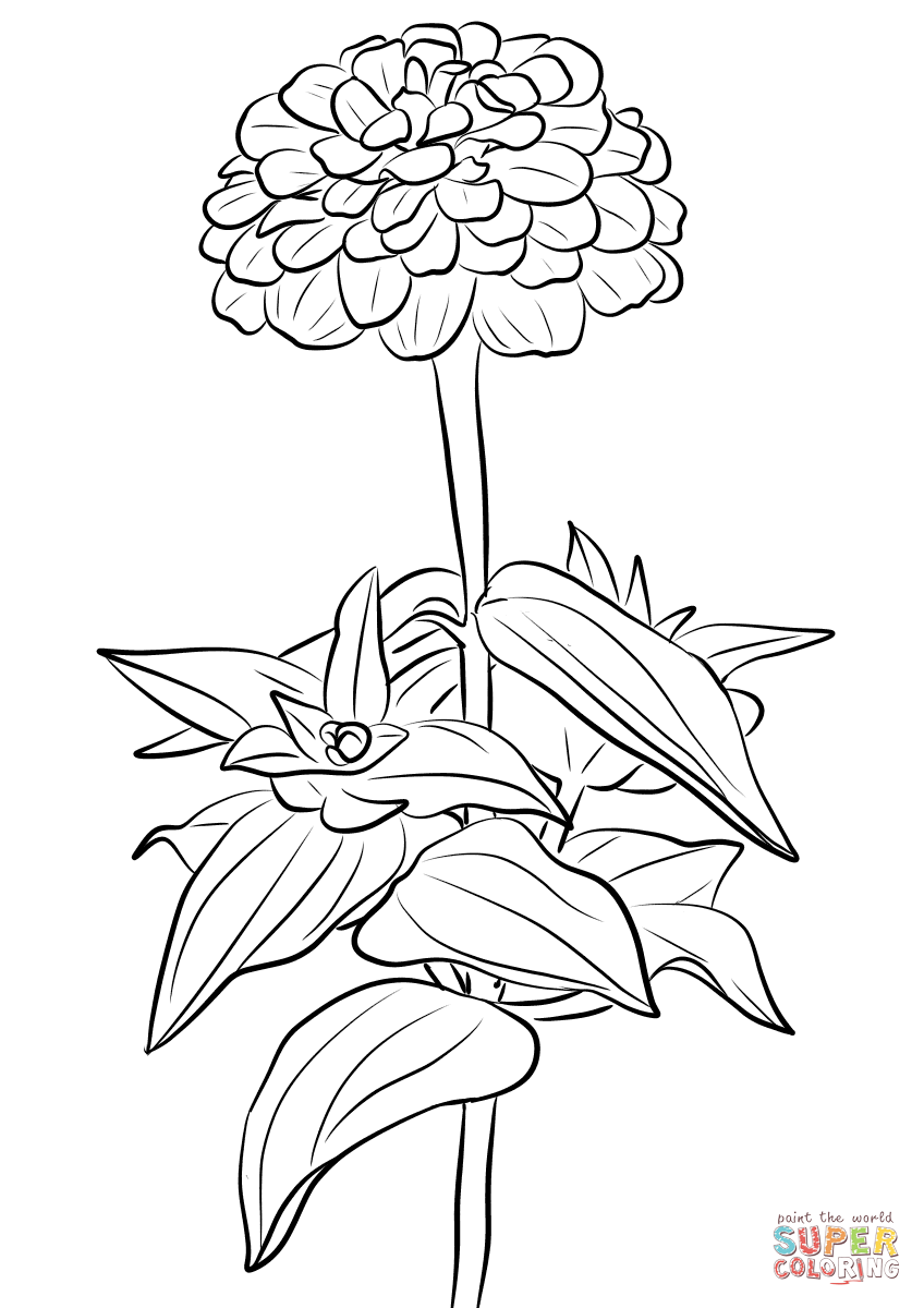elegant coloring pages animal letter coloring pages elegant letter o coloring pages elegant coloring