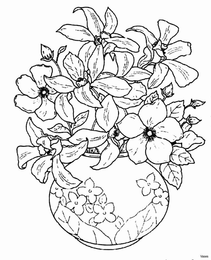 elegant coloring pages flowers and leaves with elegant patterns flowers adult elegant coloring pages