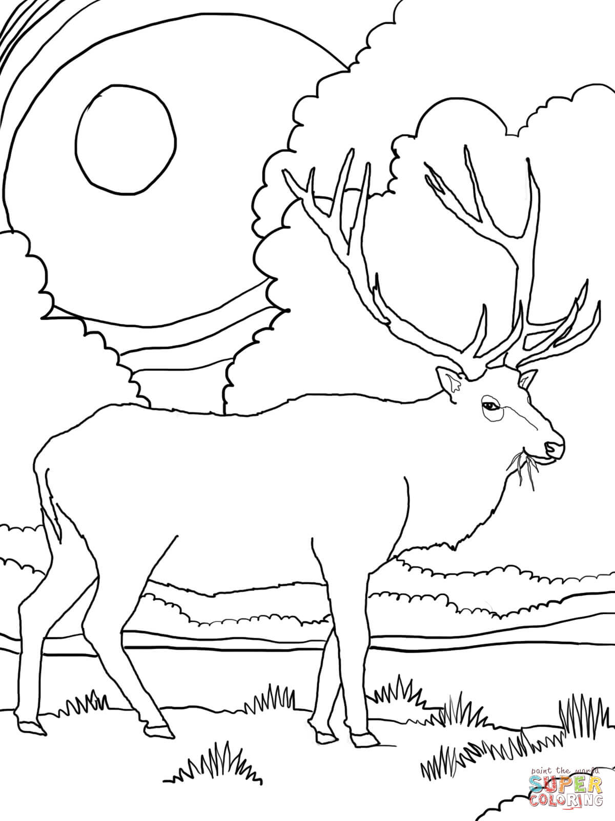 elk coloring pages bull elk coloring pages download and print for free coloring elk pages