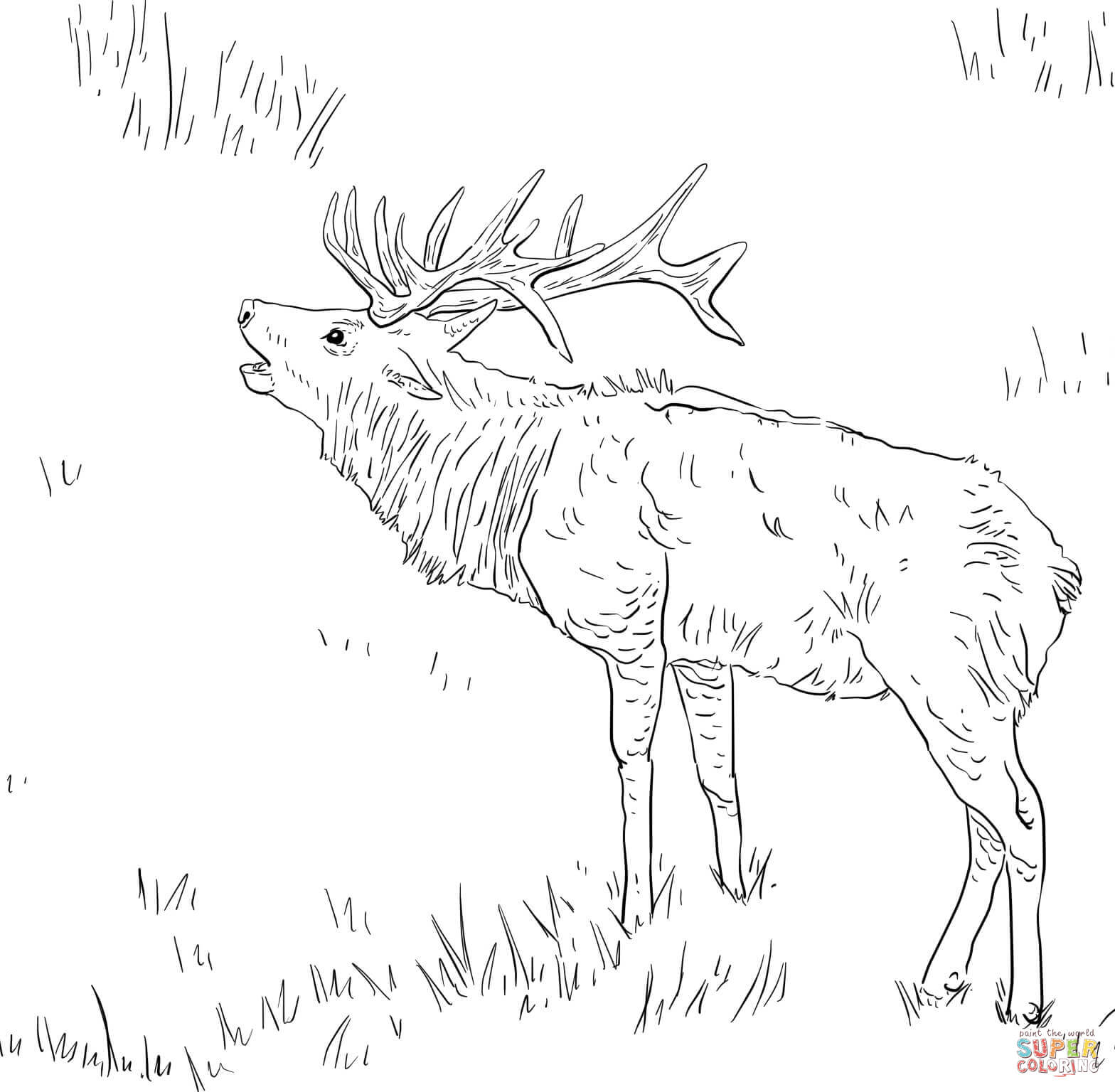 elk pictures to color bull elk coloring pages download and print for free elk color pictures to