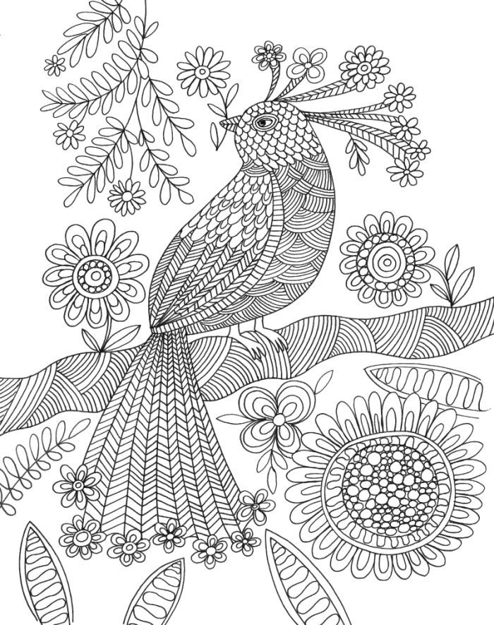 exotic animal coloring pages 260 best images about bird coloring pages on pinterest pages coloring exotic animal