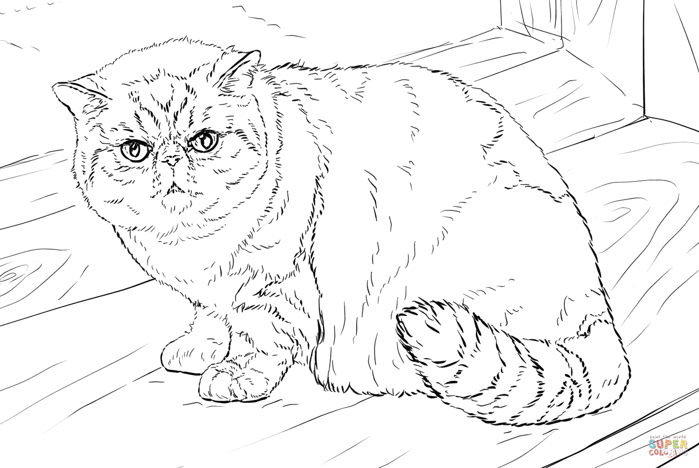 exotic animal coloring pages coloring page base coloring pages bird coloring pages exotic animal coloring pages