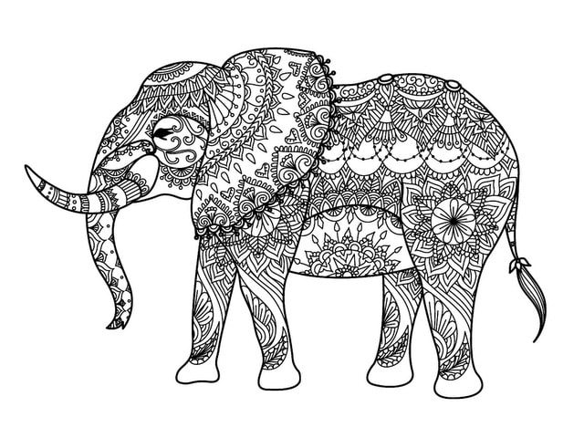 exotic animal coloring pages digital download zoo animal adult coloring book pages wild exotic animal pages coloring