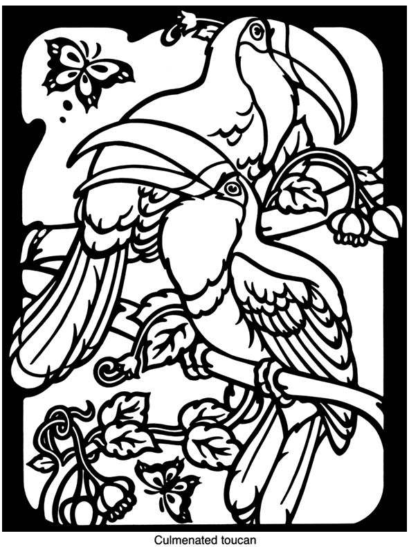 exotic animal coloring pages exotic animal coloring pages exotic pages animal coloring