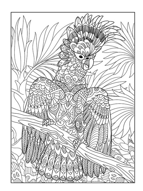 exotic animal coloring pages exotic animals adult coloring book designs myria coloring pages animal exotic