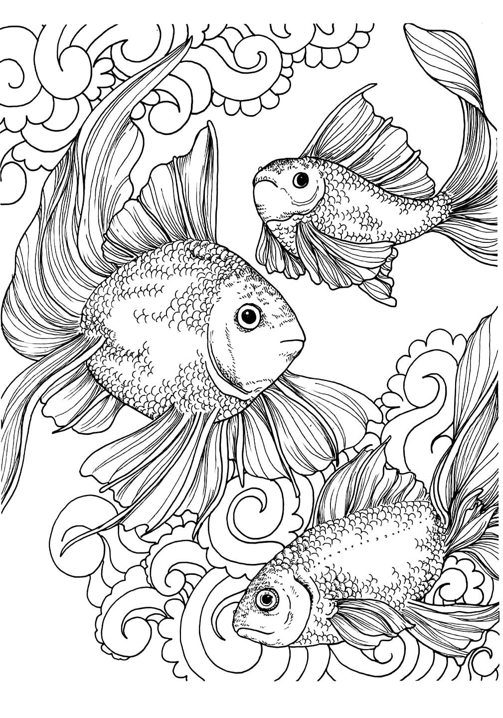 exotic animal coloring pages exotic animals adult coloring book designs myria exotic pages animal coloring