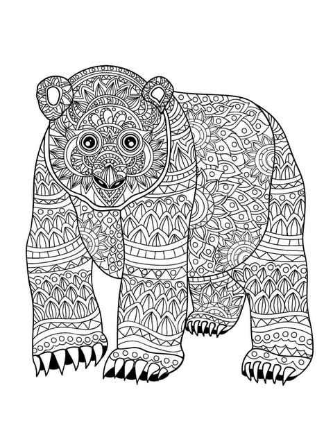 exotic animal coloring pages exotic rhinoceros hornbill bird adult by coloring animal exotic pages