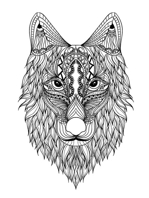 exotic animal coloring pages pet bird parrot finch canary coloring pages coloring animal exotic coloring pages