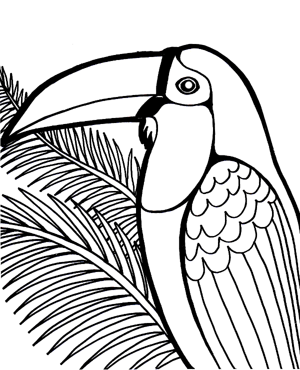 exotic animal coloring pages the exotic jungle looks and wild ocelot cat adult pages coloring animal exotic