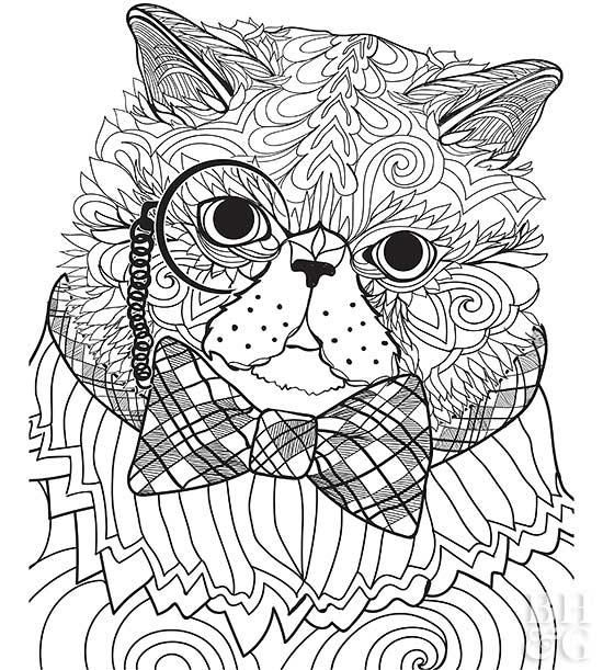 exotic animal coloring pages tucan on a branch color page animal coloring pages exotic