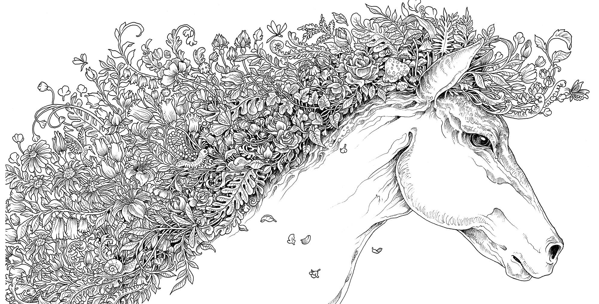 extreme coloring pages imagimorphia an extreme coloring and search challenge coloring pages extreme
