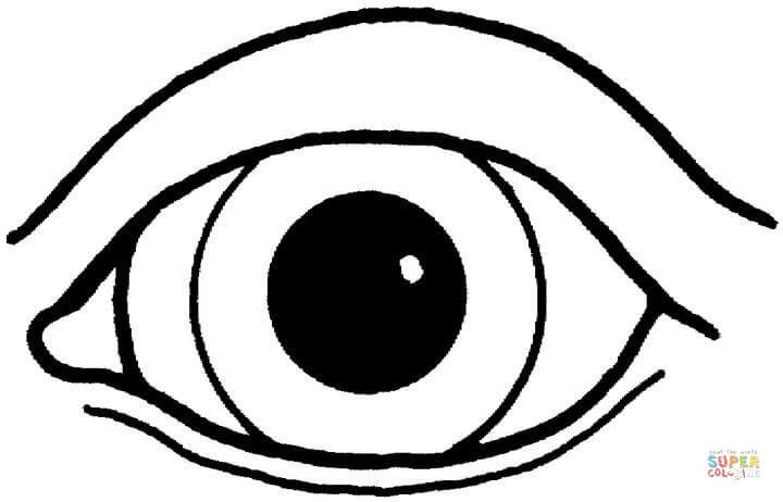 eye coloring page eyes coloring pages free printable eyes coloring pages eye page coloring