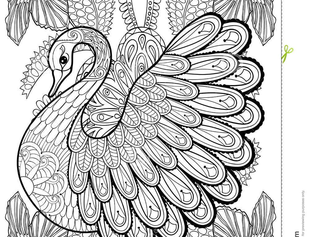 fancy coloring pages fancy coloring pages for adults at getcoloringscom free pages coloring fancy