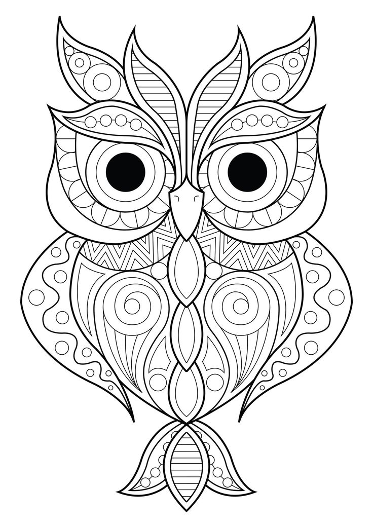 finished owl coloring pages 10 difficult owl coloring page for adults owl coloring pages finished