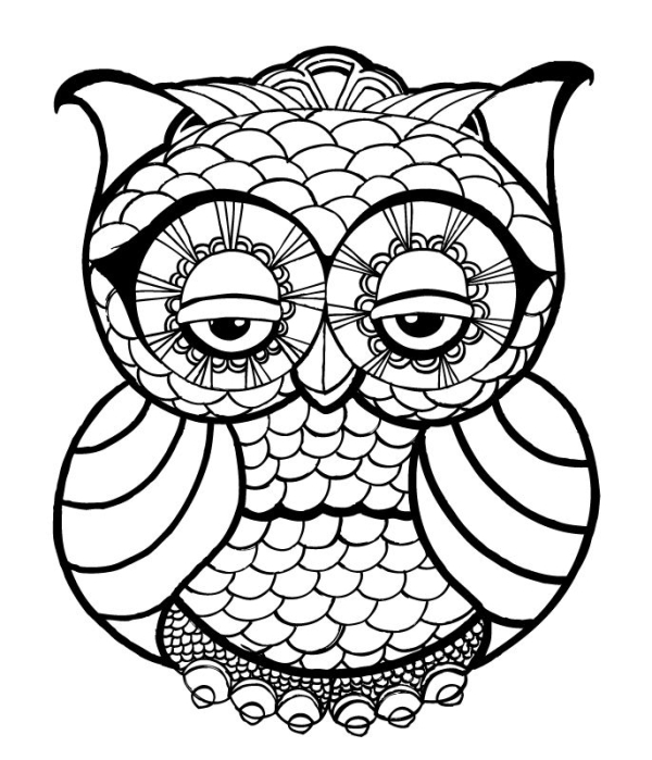 finished owl coloring pages 10 difficult owl coloring page for adults pages finished owl coloring