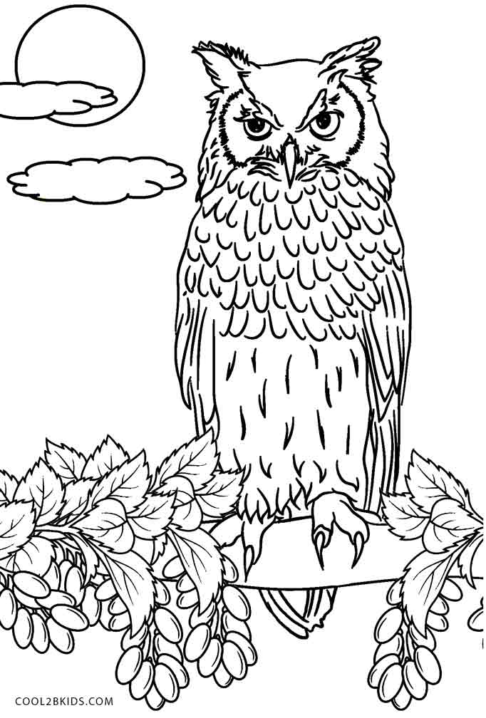 finished owl coloring pages adult owl coloring page coloring pages for kids owl coloring finished pages