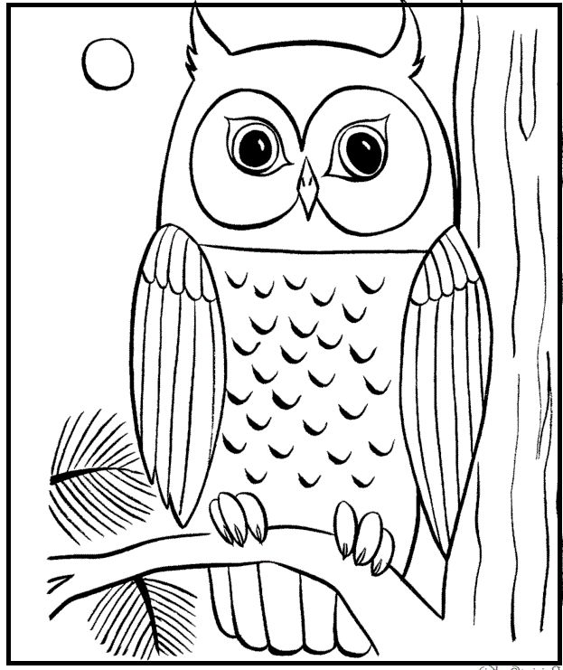 finished owl coloring pages color me sock owls just finished this new coloring page pages owl finished coloring