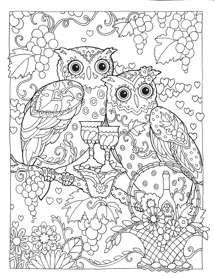 finished owl coloring pages coloring pages for adults difficult animals 17 coloring owl coloring pages finished