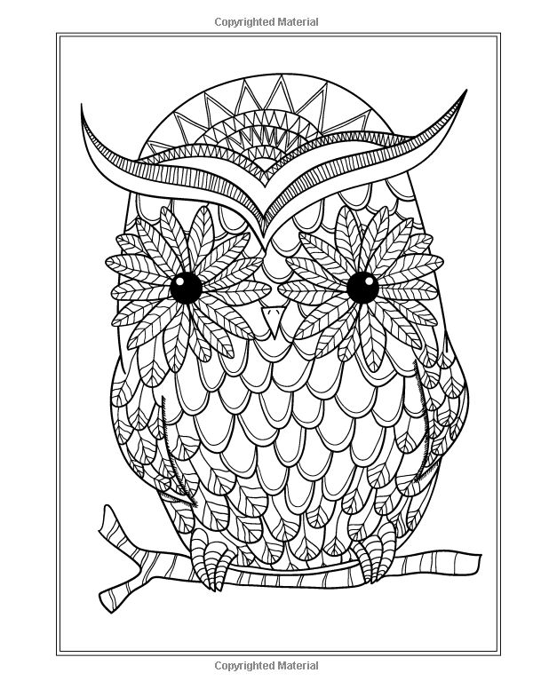 finished owl coloring pages finished owl pages coloring pages owl coloring finished pages