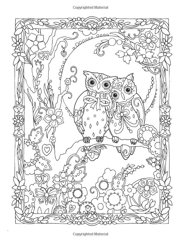 finished owl coloring pages nocturnal bird owl coloring pages 34 pictures cartoon clip coloring pages owl finished