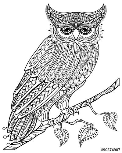 finished owl coloring pages owl love married bride groom zentangle coloring pages owl coloring pages finished
