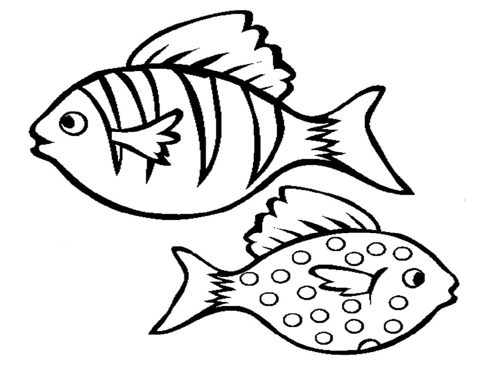 fish picture to color animal fishs coloring pages images fish picture to color