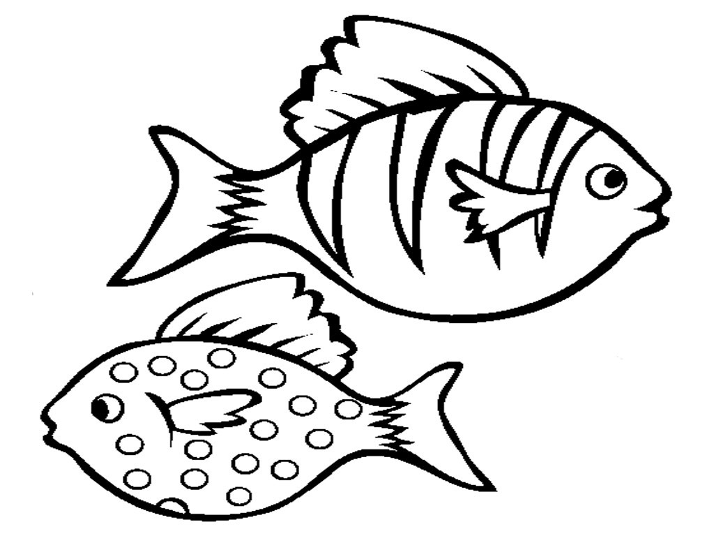 fish picture to color print download cute and educative fish coloring pages fish to color picture