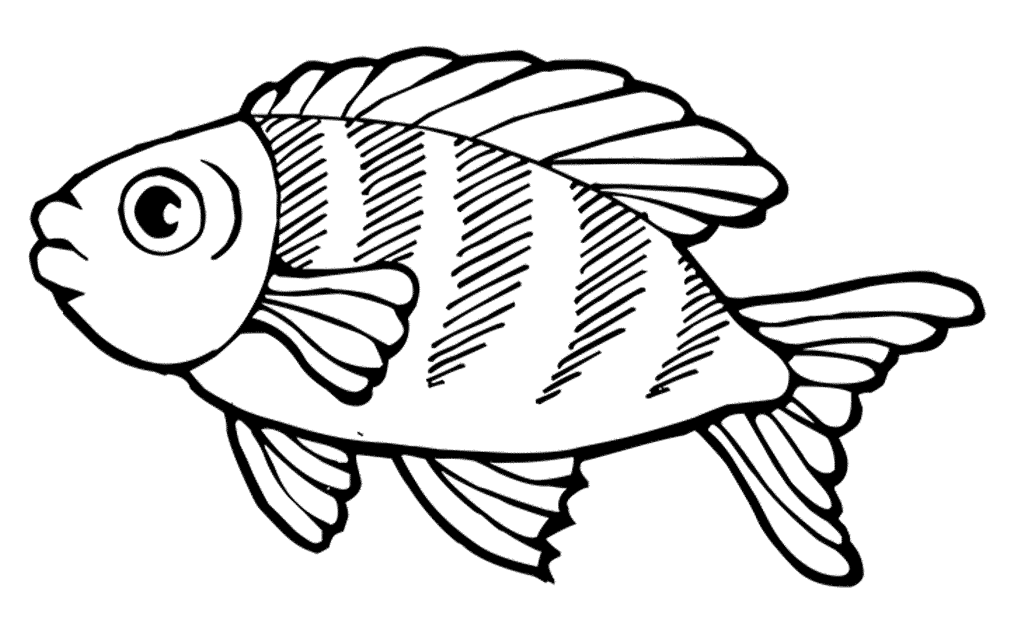 fish picture to color printable goldfish coloring pages for kids color picture to fish