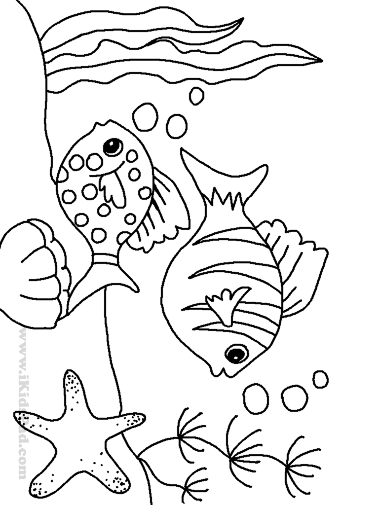 fish picture to color sea coloring pages to download and print for free fish picture color to
