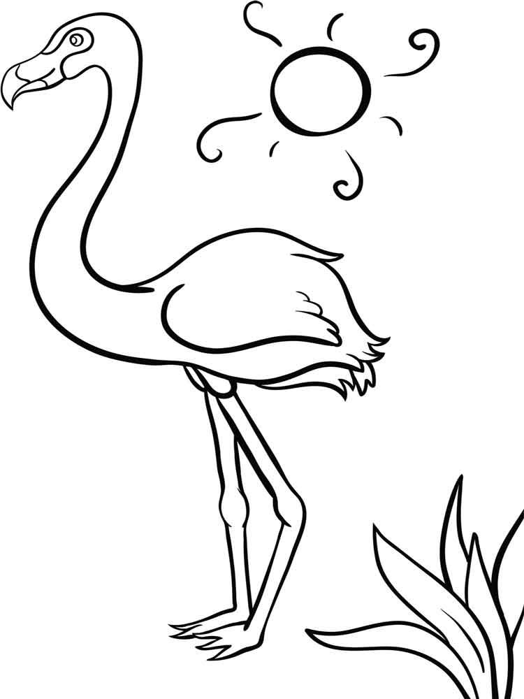 flamingo coloring pictures flamingo cartoon drawing at getdrawings free download flamingo coloring pictures