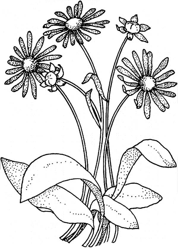 flower bouquet coloring page bouquet of flowers coloring pages for childrens printable flower coloring page bouquet